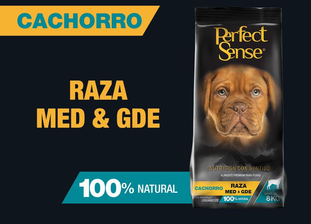 Cachorro Raza Med & Gde